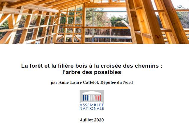Remise officielle du rapport sur la forêt et la filière bois de la Députée AL. Cattelot au Ministre Denormandie