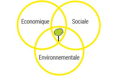 Developpement durable forêt