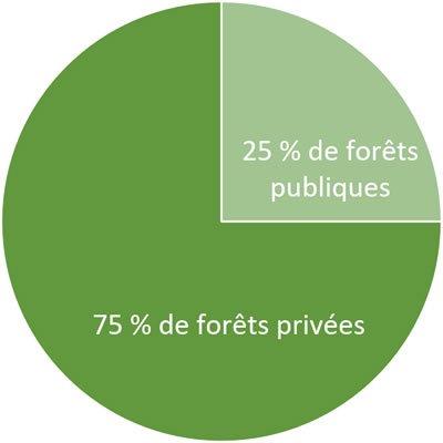 Graphique forêt publiques/privées