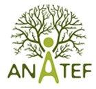 Anatef